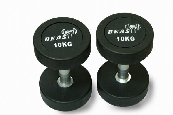 10kg rubber dumbbells